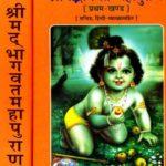 श्रीमद् भागवत महापुराण और भगवद्गीता के बीच क्या अंतर है?
