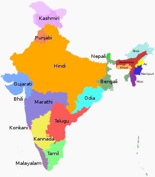 जाने भारत में कितने तरीको की भाषाएं बोली जाती है?